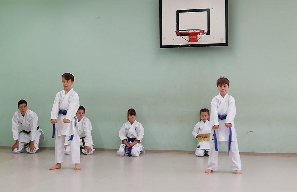 Karate v 1. razredu